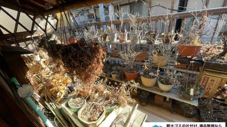 2021年7月13日大阪府大阪市東成区でベランダの植木鉢を中心に不用品回収させていただきました。写真4