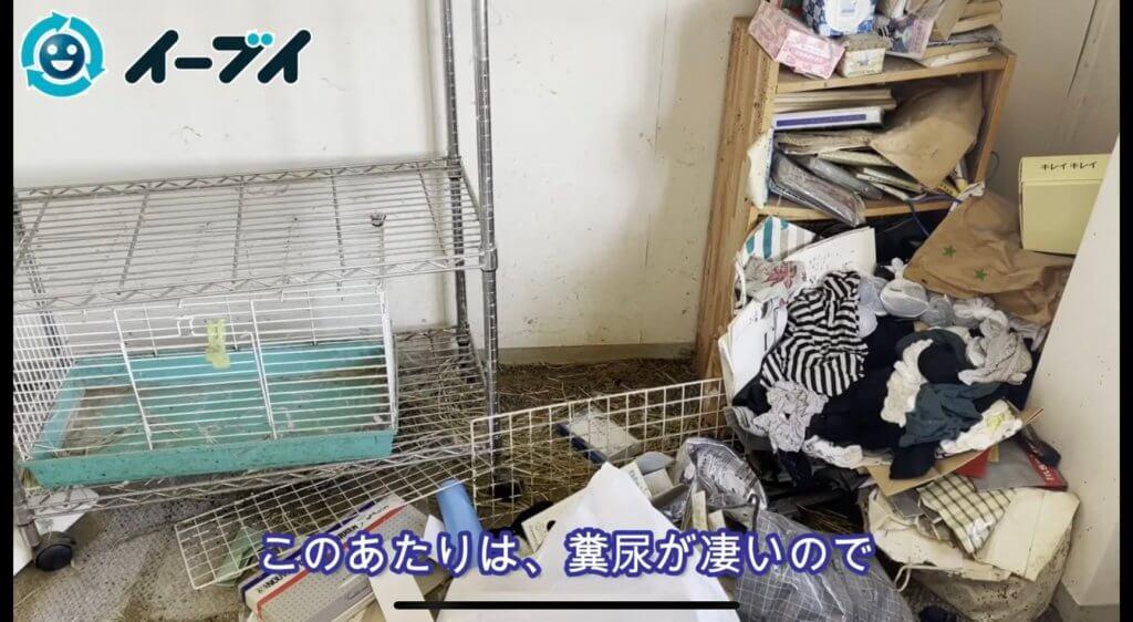 2021年8月29日モルモットの糞が散乱したワンルームのゴミ屋敷~タコ足コンセントの危険性~写真9